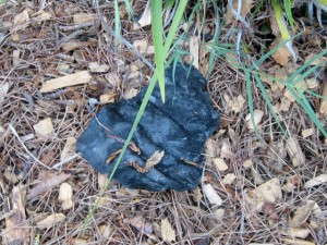 "FISC fire debris - 6"" piece"